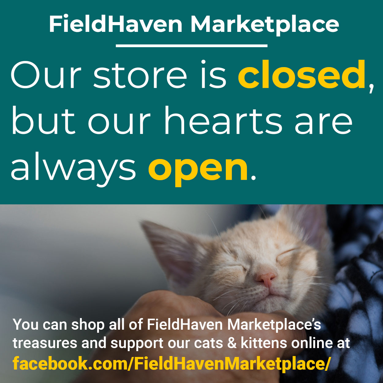 Our store may be closed, but our hearts are always open. You can shop all of FieldHaven Marketplace's treasures and support our cats & kittens online at facebook.com/FieldHavenMarketplace/